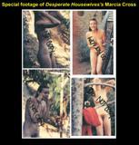 Marcia Cross Interesting: Foto 34 (Марсия Кросс Интересное: Фото 34)