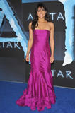 http://img172.imagevenue.com/loc138/th_37562_celebrity-paradise.com-The_Elder-Michelle_Rodriguez_2009-12-16_-_Avatar_LA_Premiere_3120_122_138lo.jpg
